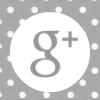 google-plus-icon-gray
